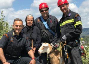 Άρτα: Επιχείρηση της ΕΜΑΚ για τη διάσωση κατσίκας
