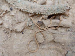 Ανακαλύφθηκαν 700 φιάλες με αρχαία αντικαταθλιπτικά και φάρμακα για την καρδιά