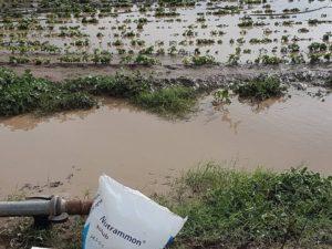 Καιρός: Μεγάλες καταστροφές από τη βροχή στη Λάρισα [pics]