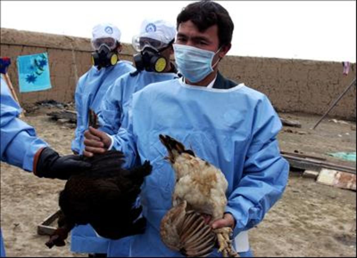 Έκαναν ακόμα πιο επικίνδυνο γνωστό θανατηφόρο ιό! | Newsit.gr