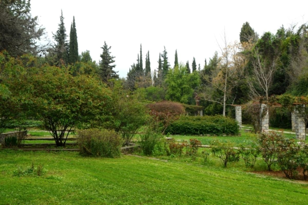 Αυτός ο παράδεισος είναι 8 χιλιόμετρα από το κέντρο της Αθήνας και ίσως δεν γνωρίζετε καν ότι υπάρχει!