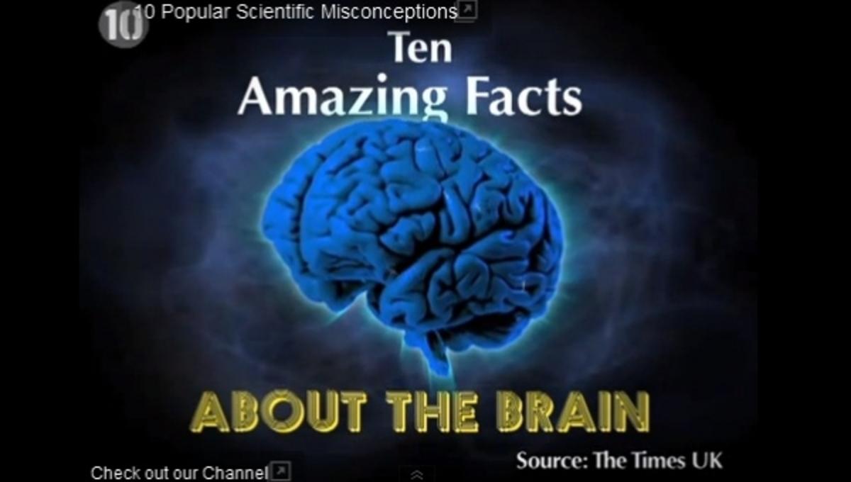 10 πράγματα για τον εγκέφαλο που δεν ξέρετε – ΒΙΝΤΕΟ | Newsit.gr