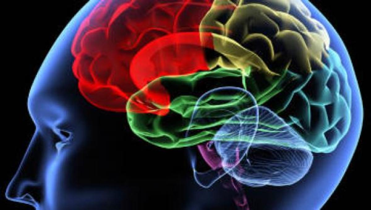 Κατασκευάστηκε μικροτσίπ που επικοινωνεί με τον ανθρώπινο εγκεφαλο! | Newsit.gr