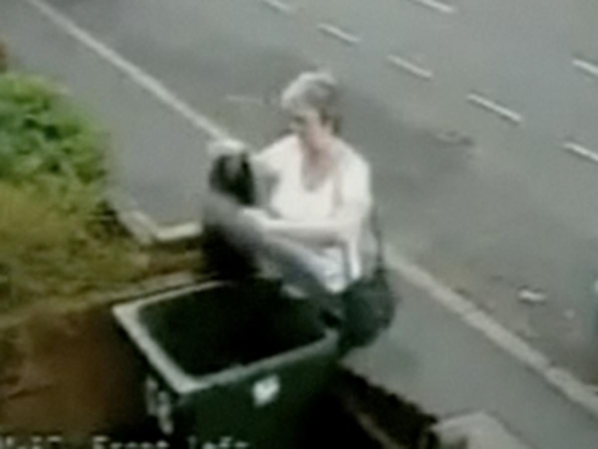 Κατάπληκτη από τις αντιδράσεις δηλώνει η γυναίκα που πέταξε γατάκι στα σκουπίδια | Newsit.gr