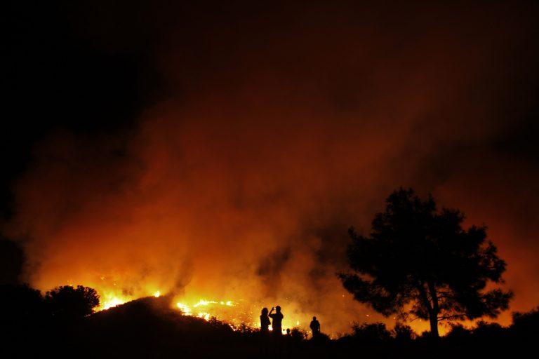 Υπό πλήρη έλεγχο η πυρκαγιά στην Κύπρο | Newsit.gr