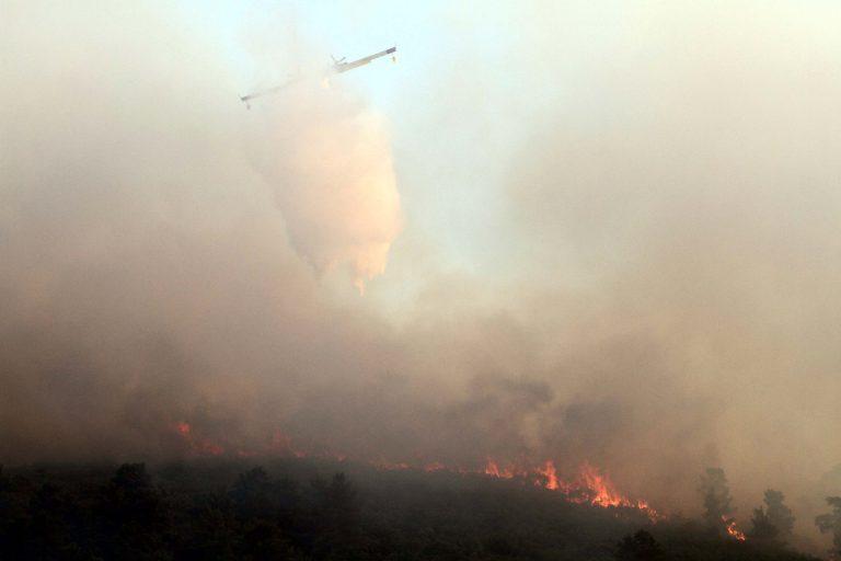 Ρόδος: Καίγεται πευκοδάσος στο Μονόλιθο | Newsit.gr