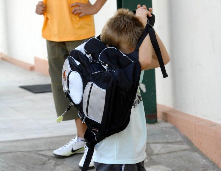 Εύβοια:Η κλοπή που έκανε ένα παιδάκι του δημοτικού να βουρκώσει… | Newsit.gr