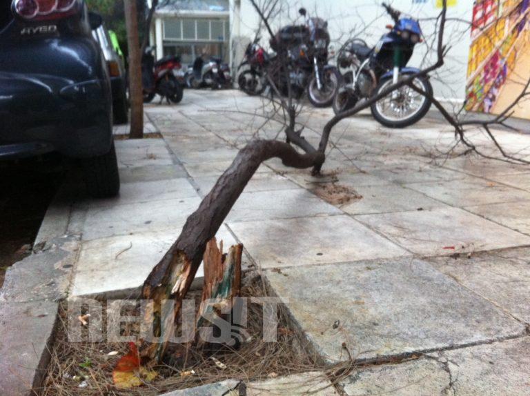 Τρέχει η Πυροσβεστική σε όλη την Αθήνα – Ξεριζωμένα δέντρα και πεσμένες πινακίδες   Newsit.gr