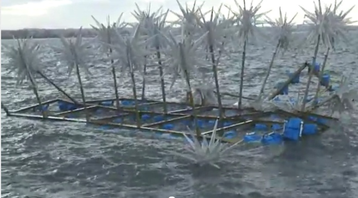 Θεσσαλονίκη: Βουλιάζει το πλωτό χριστουγεννιάτικο δέντρο! – Video | Newsit.gr