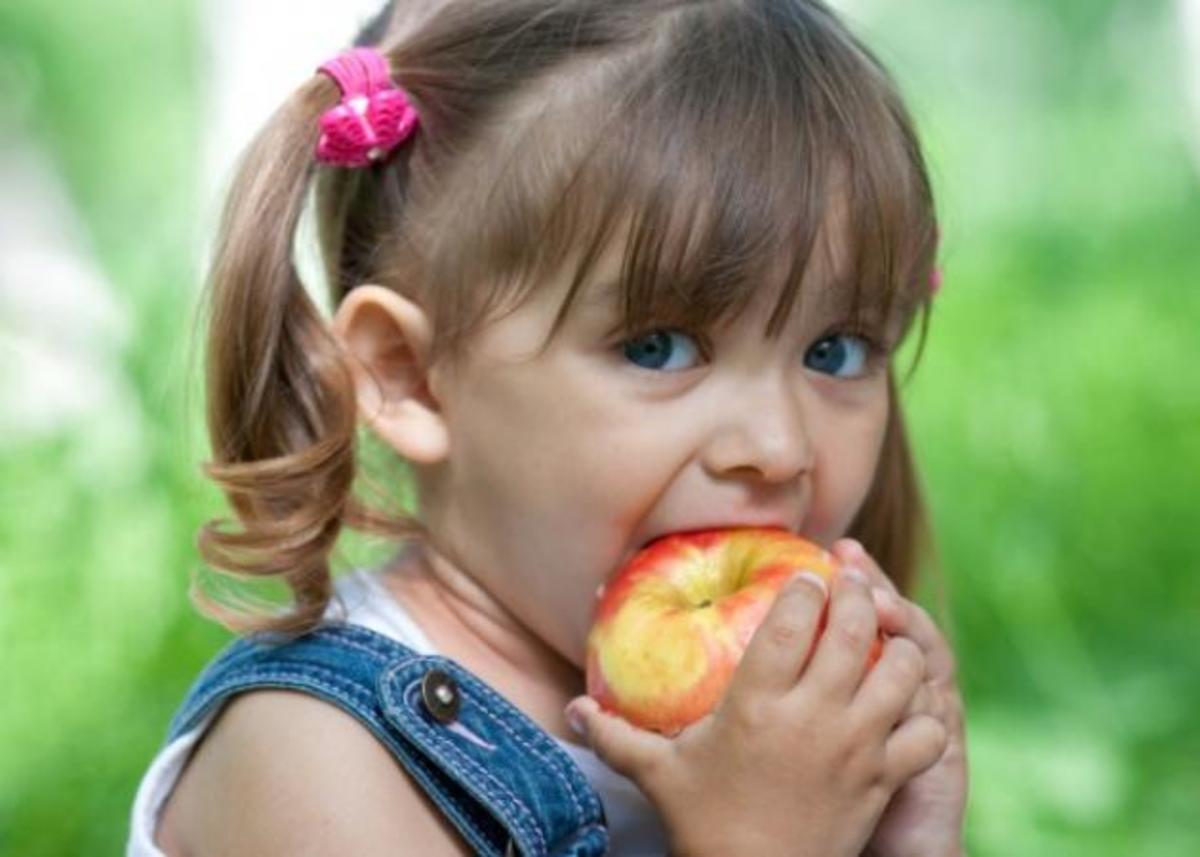 Ποια πρέπει να είναι η διατροφή του ολόκληρη τη μέρα; | Newsit.gr