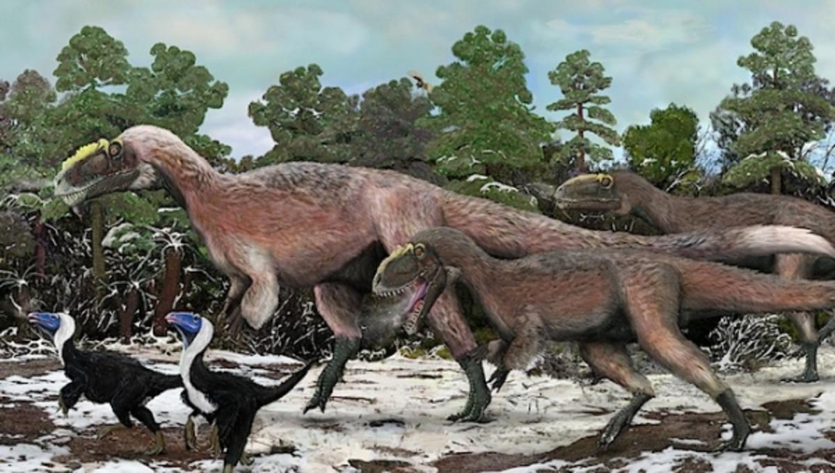 Ανακαλύφθηκε ο μεγαλύτερος φτερωτός δεινόσαυρος που υπήρξε ποτέ | Newsit.gr