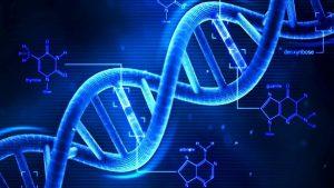 Για όλα φταίνε τα γονίδια! Σε στέλνουν και πανεπιστήμιο