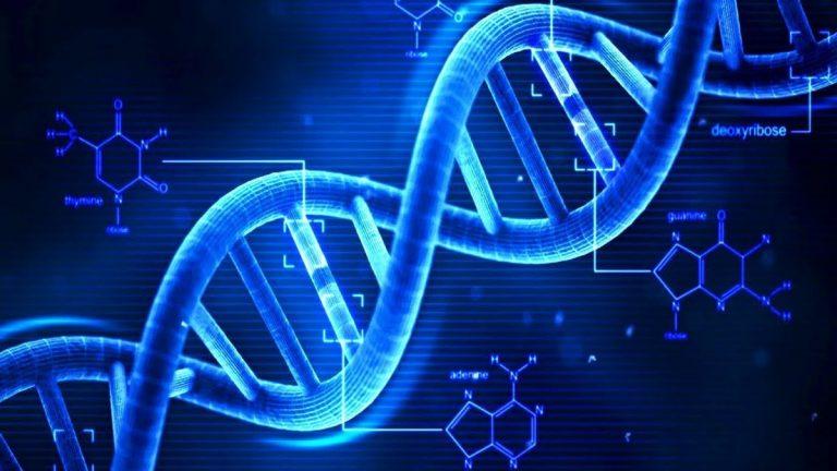 Για όλα φταίνε τα γονίδια! Σε στέλνουν και πανεπιστήμιο | Newsit.gr