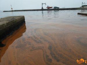 Θεσσαλονίκη: Κόκκινη θάλασσα ο Θερμαϊκός – Το φαινόμενο της ερυθράς παλίρροιας [pics]