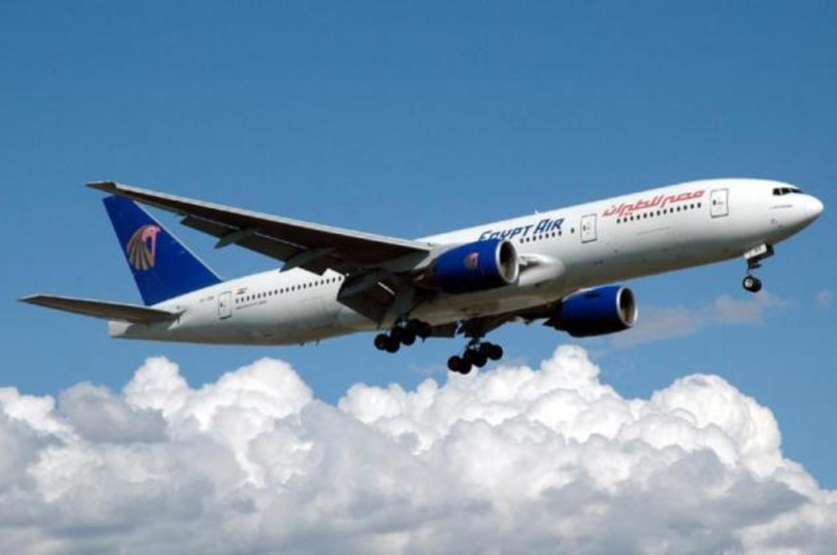 Φίδι δάγκωσε επιβάτη αεροπλάνο – Αναγκαστική προσγείωση | Newsit.gr