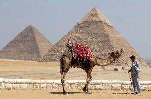 Καλορίζικος! Ο ΦΠΑ… έφτασε στην Αίγυπτο!