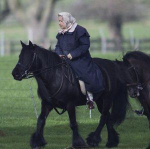 Βασίλισσα Ελισάβετ: Το… λέει η περδικούλα της! [pics]