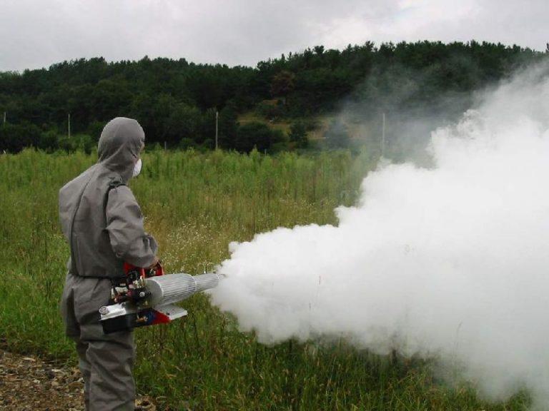 ΕΕ: Περιορίστε τη χρήση εντομοκτόνων που βλάπτουν τις μέλισσες | Newsit.gr