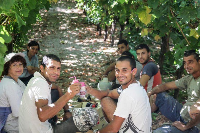 Κρήτη:»Οι Βούλγαροι είναι για δουλειά και οι Έλληνες για καφετέριες»! | Newsit.gr