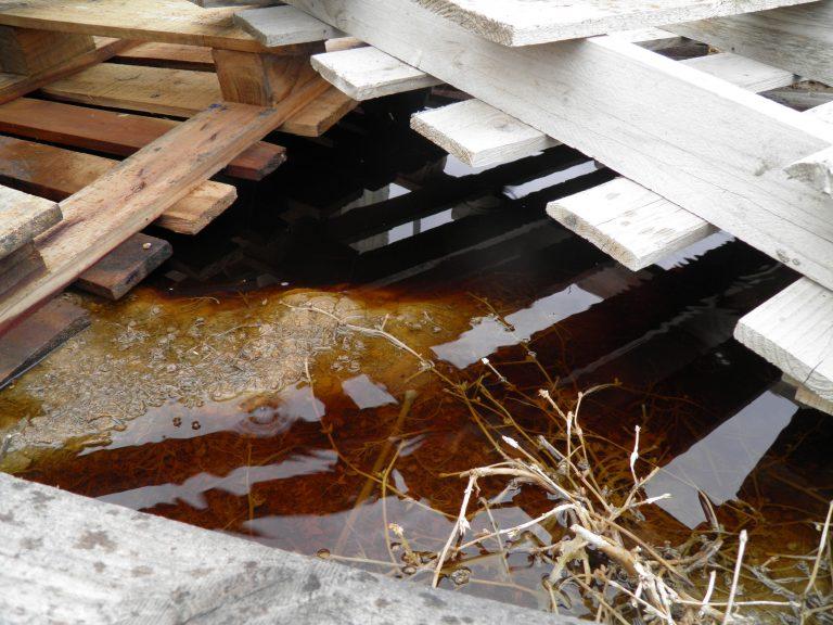 Έπιασαν 40χρονο, υπεύθυνο εργοστασίου αποτέφρωσης, για μόλυνση του περιβάλλοντος – ΦΩΤΟ   Newsit.gr