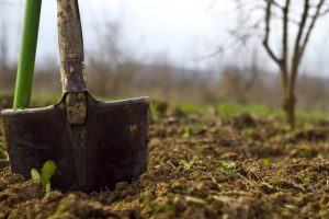 Ένας εν ενεργεία αστυνομικός και ένας συνταξιούχος έσκαβαν για αρχαία στα Γιαννιτσά!