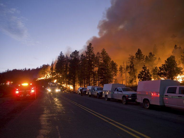 11.000 άστεγοι από τις πυρκαγιές στις ΗΠΑ   Newsit.gr