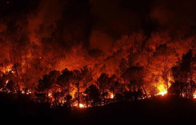Δώδεκα φωτιές στην Πορτογαλία | Newsit.gr