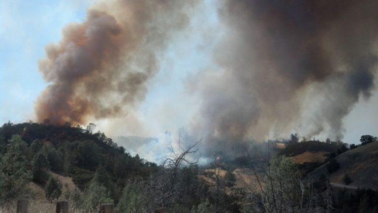 Τεράστια καταστροφή στην Αλγερία- Στάχτη 200.000 στρέμματα | Newsit.gr
