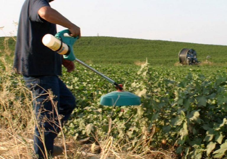 Σέρρες: Τα παράνομα φυτοφάρμακα έφεραν… χειροπέδες | Newsit.gr