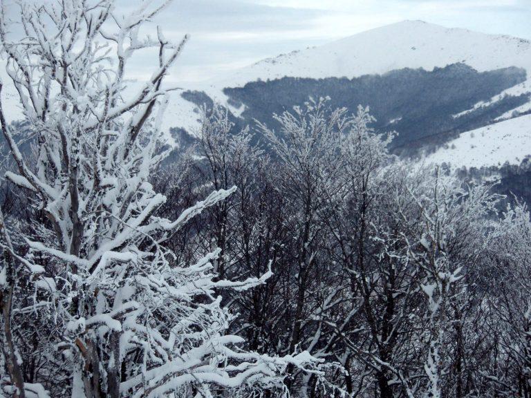 Χειμωνιάτικο τοπίο στη Βόρεια Ελλάδα | Newsit.gr