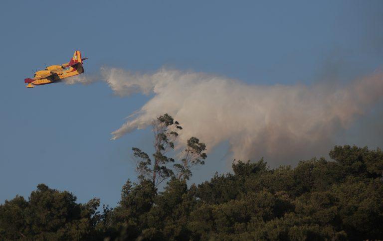 Φωτιά στο Λαγονήσι – Καίγεται λόφος με πεύκα | Newsit.gr