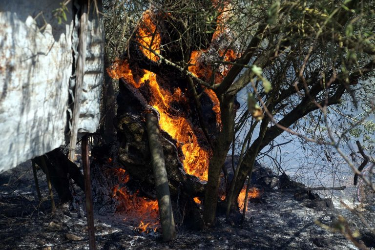 Φωτιές σε εξέλιξη σε Κρήτη και Αιτωλοακαρνανία | Newsit.gr
