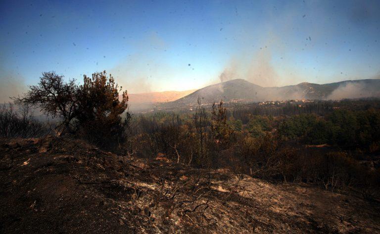 Πυρκαγιά σε εξέλιξη στο Βόλο | Newsit.gr