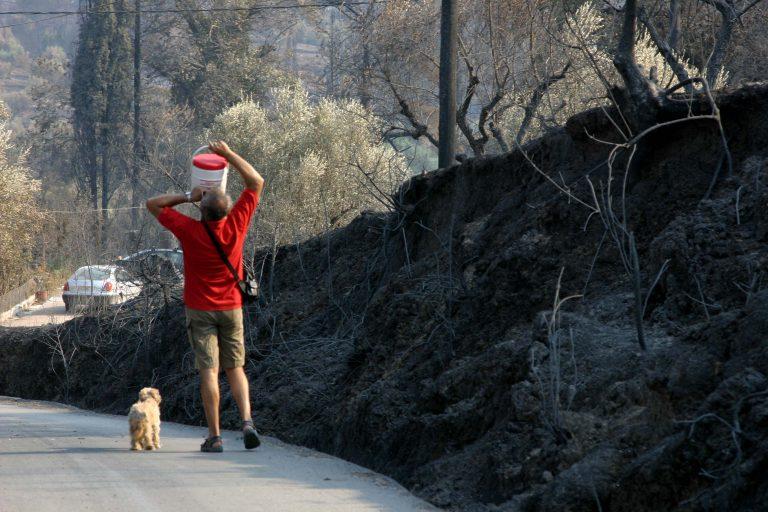 Ηλεία: Στη δικαιοσύνη οι υπαίτιοι των φονικών πυρκαγιών | Newsit.gr