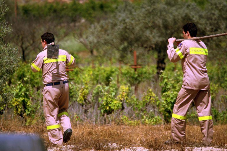 Φωτιά σε λόφο στο Περιστέρι | Newsit.gr