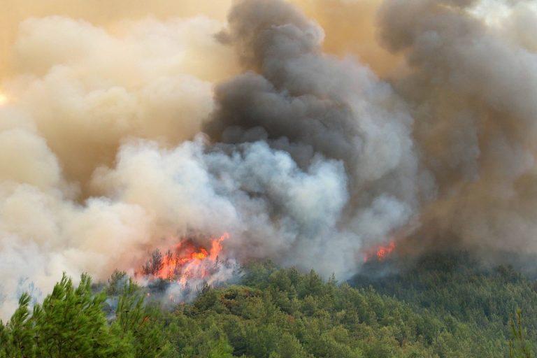 Φωτιά τώρα σε δύσβατη περιοχή στον Χάρακα Ηρακλείου | Newsit.gr