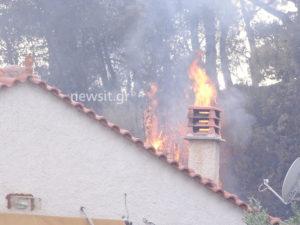 Μια νεκρή στη φωτιά στους Αγίους Θεοδώρους – Κάηκαν σπίτια! [vid, pics]
