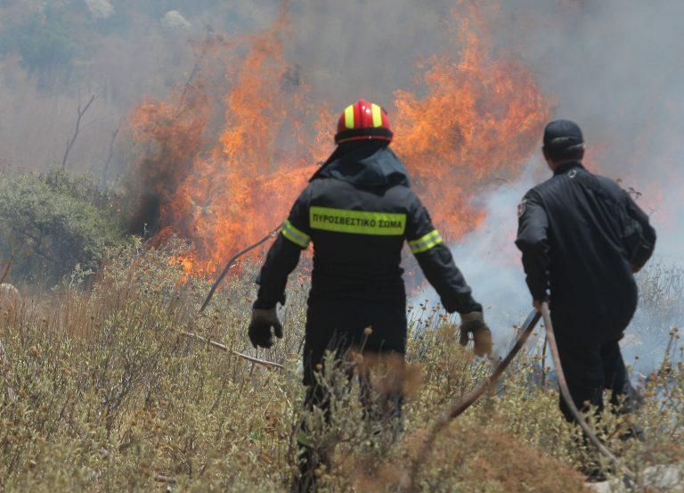 Σάμος: Τραυματίστηκε πυροσβέστης σε φωτιά | Newsit.gr