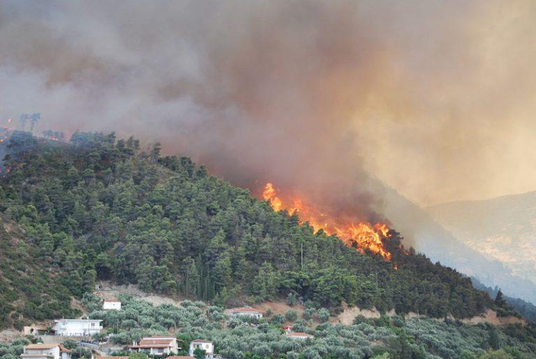 Φωτιά στη Νεάπολη Λακωνίας | Newsit.gr
