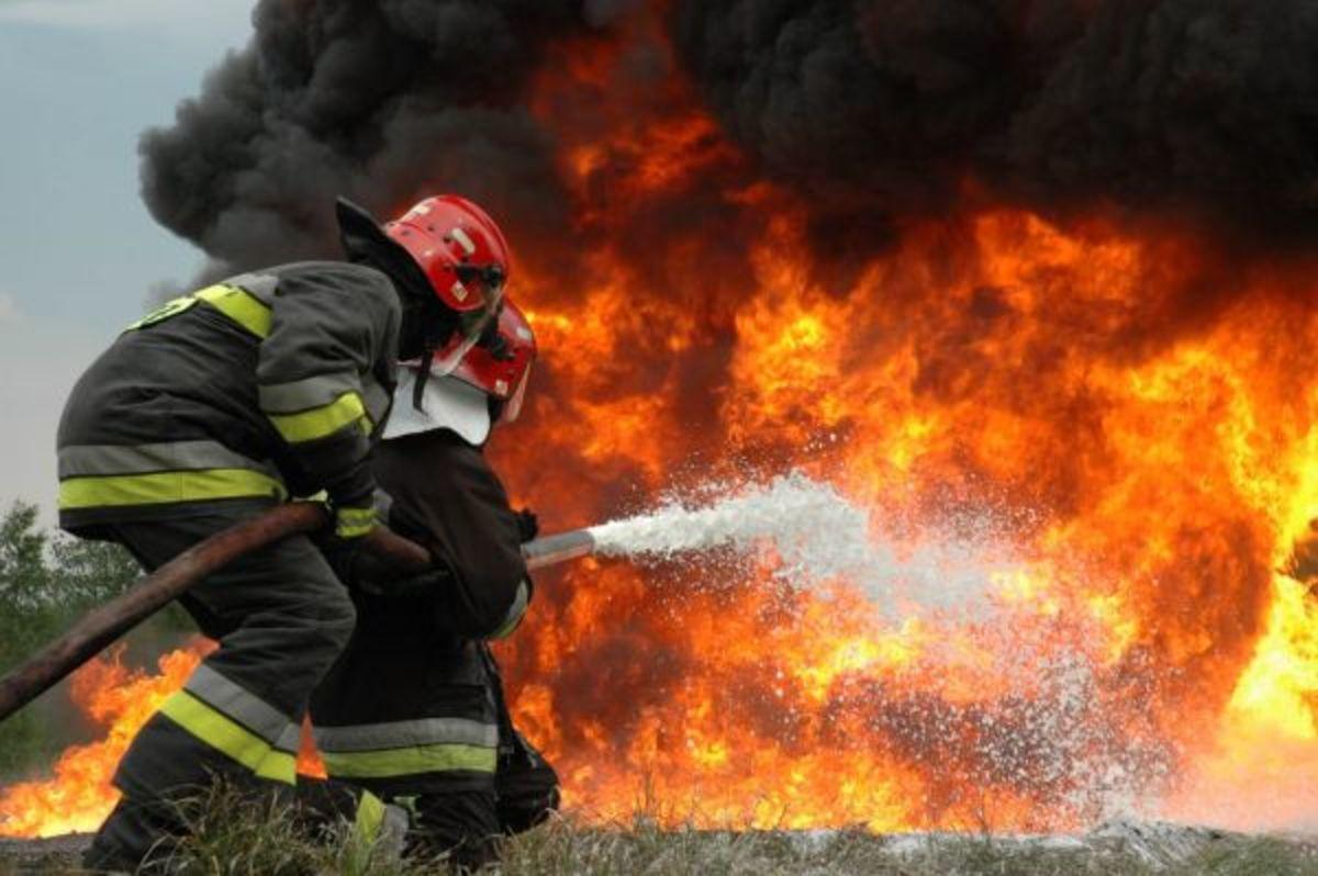 Φθιώτιδα: Σε εξέλιξη μεγάλη πυρκαγιά στο Λογγό   Newsit.gr