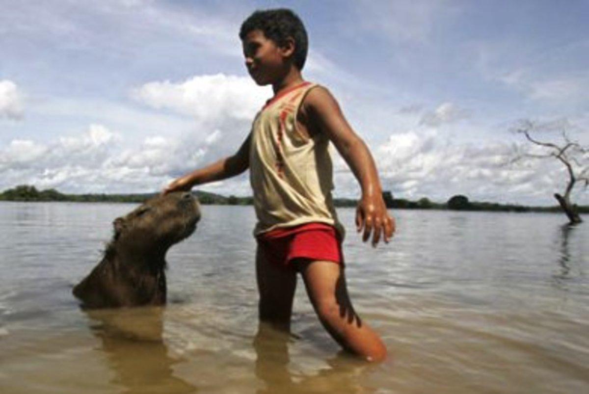 Γιγάντιο υδροηλεκτρικό φράγμα στον Αμαζόνιο…   Newsit.gr