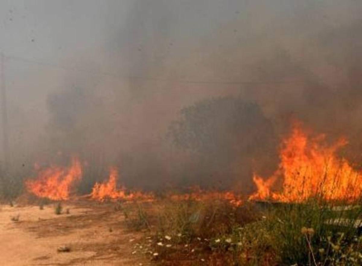 Χανιά: Φωτιά κοντά στο στρατόπεδο Ταυρωνίτη | Newsit.gr