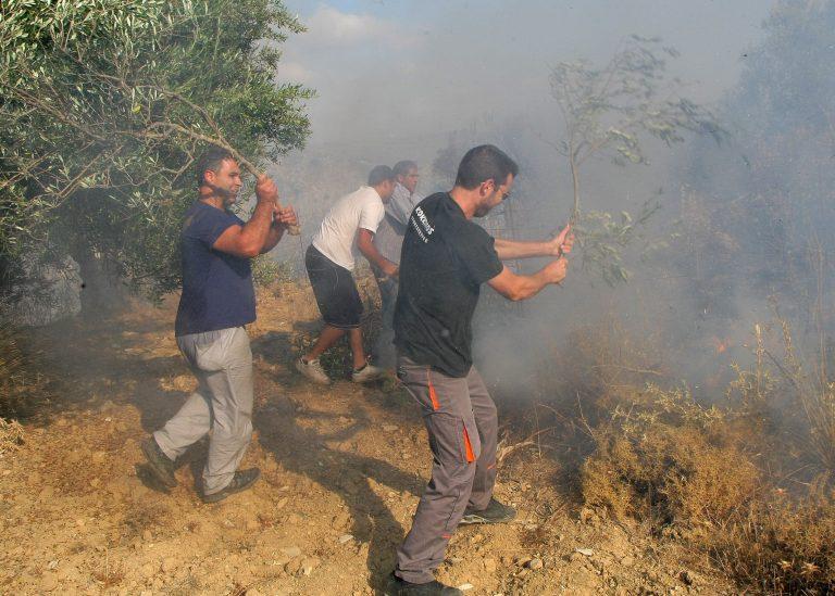 Φωτιά στη Βοιωτία | Newsit.gr