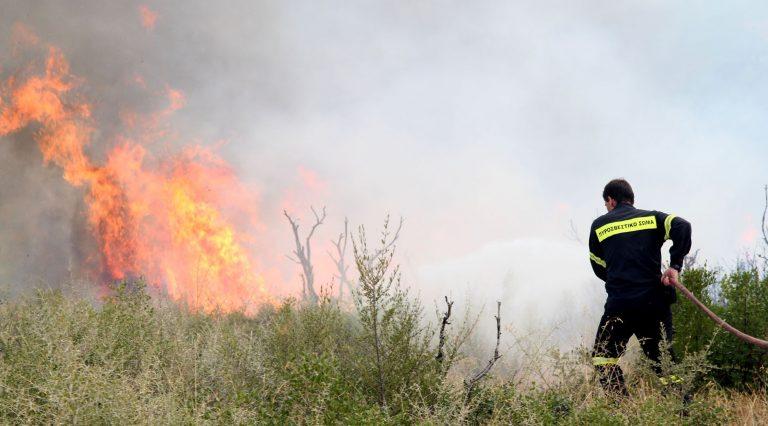 Φωτιά σε δύσβατη περιοχή στη Δράμα | Newsit.gr