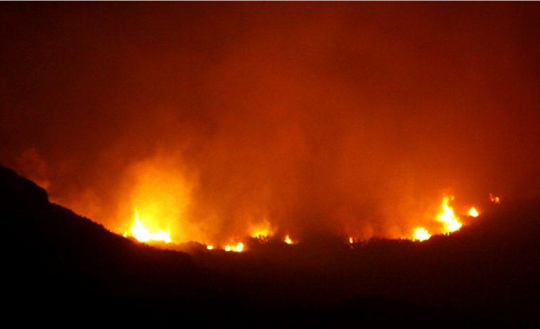 «'Ηθελα να βλέπω τ' αεροπλάνα να πετούν», είπε ο 30χρονος που συνελήφθη για τις φωτιές στην Κέρκυρα | Newsit.gr