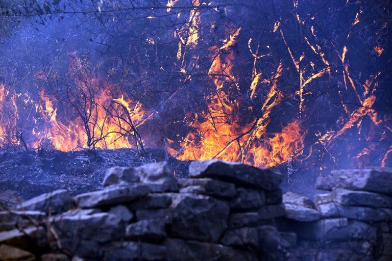Σε εξέλιξη φωτιά στη Μεγαλόπολη | Newsit.gr