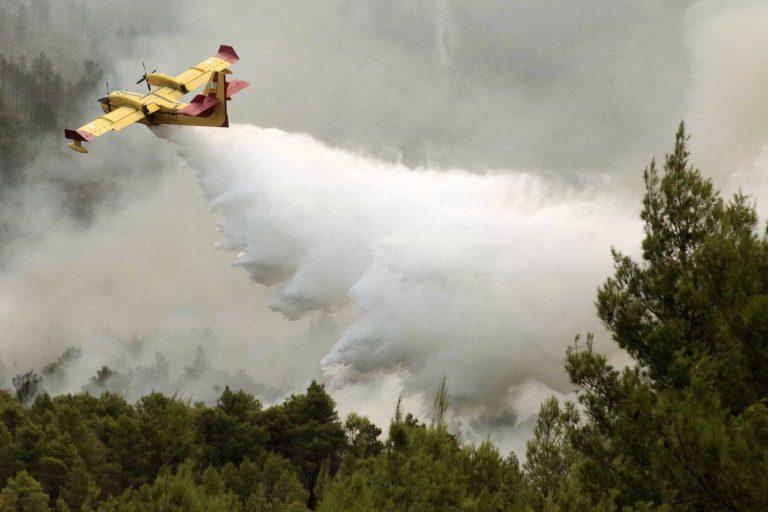 Σε ύφεση η φωτιά στην Αρκίτσα – Ολονύχτια μάχη με τις φλόγες και στην Κύμη   Newsit.gr