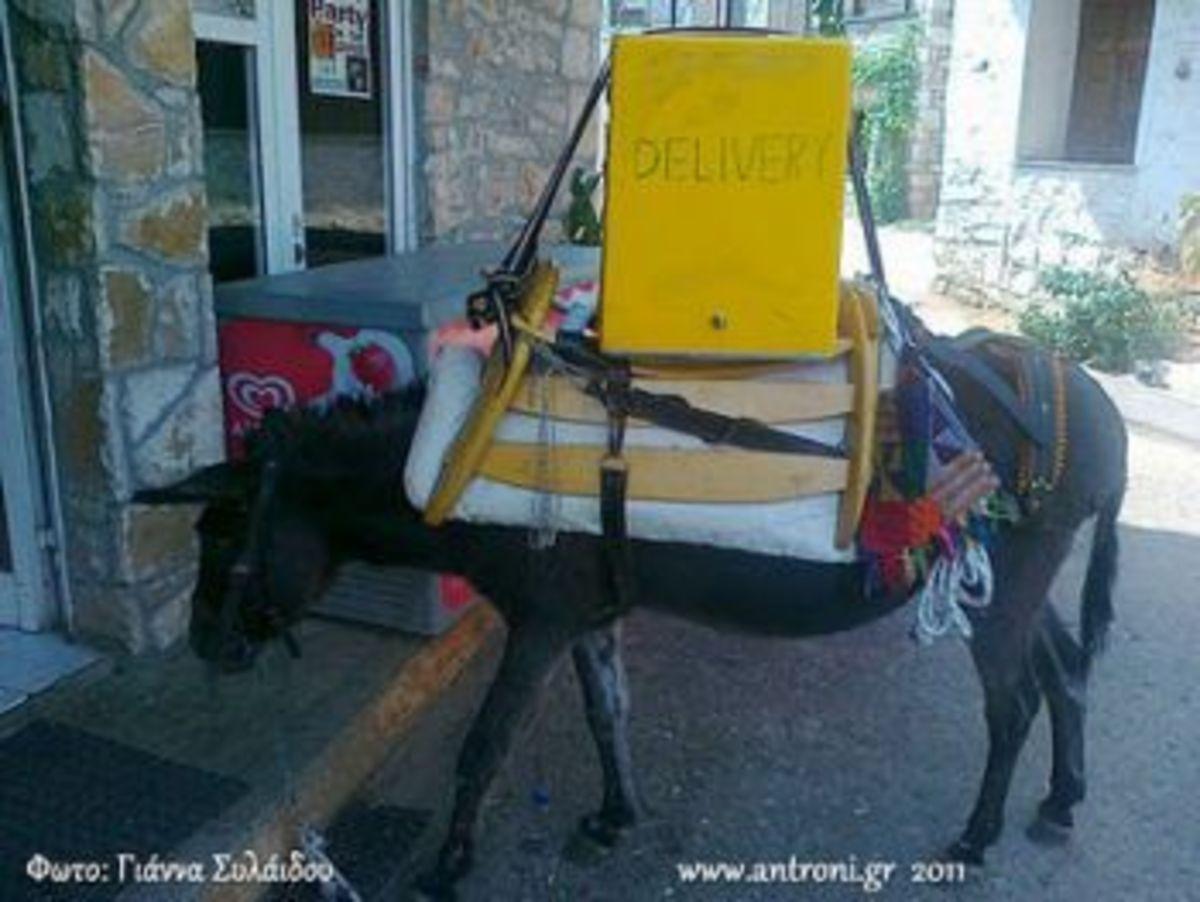 Ηλεία: Πώς φαντάζεστε ότι γίνεται το delivery σε ορεινά χωριά; | Newsit.gr