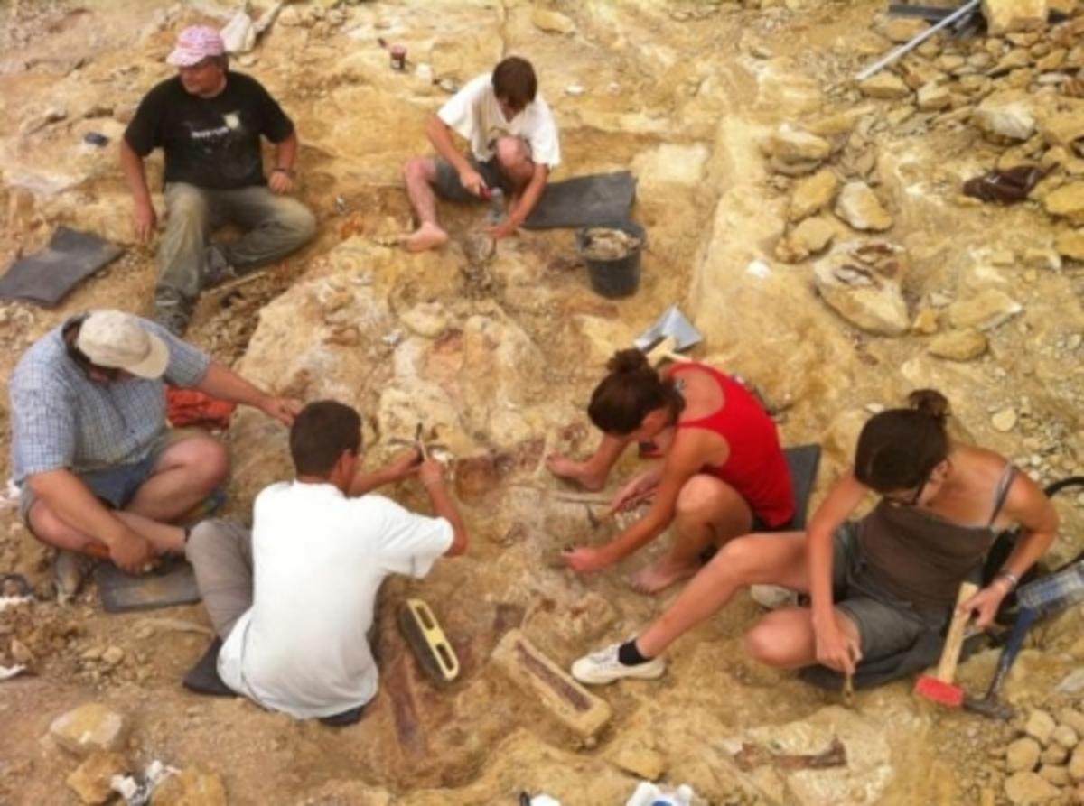Βρήκαν νέο είδος δεινοσαύρου στη Γαλλία   Newsit.gr