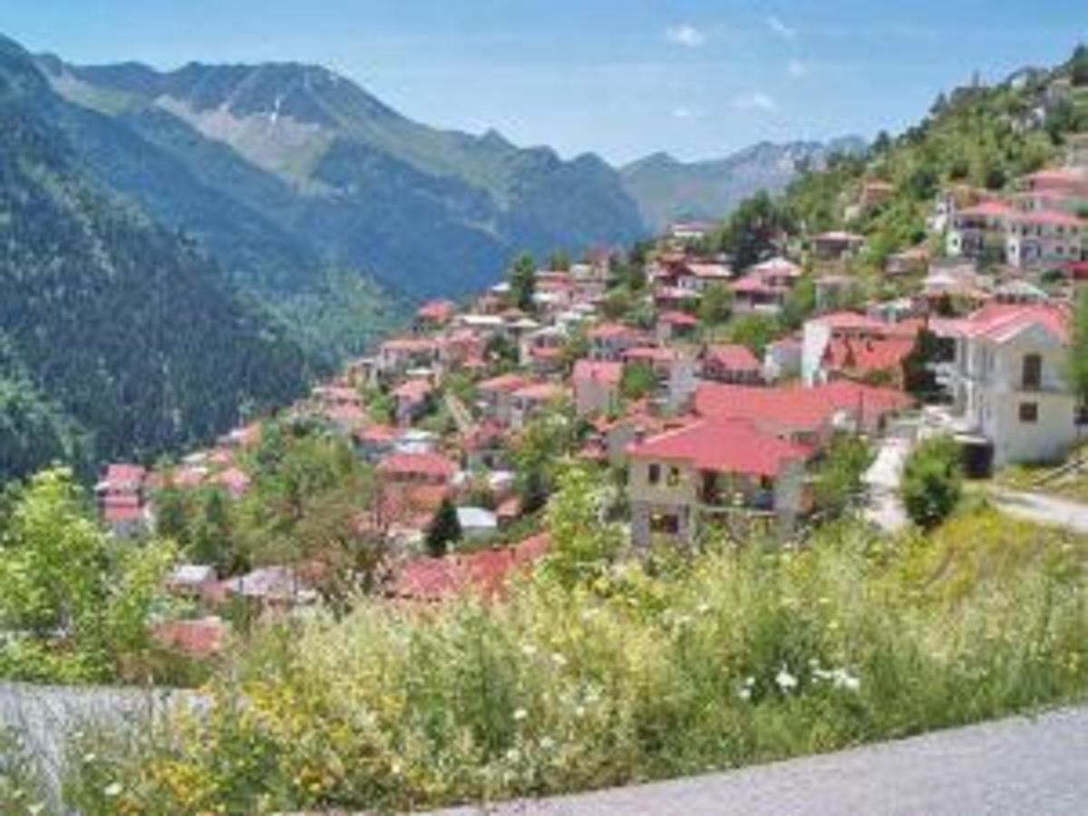 Τρίκαλα: Επιδρομή διαρρηκτών σε γραφικό χωριό με ένα κάτοικο! | Newsit.gr